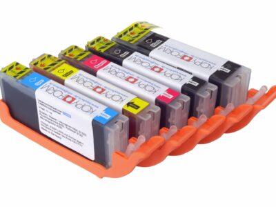 Lebensmittelpatronen mit Chip (PGI-550 / CLI-551)